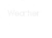 WeatherBrains-logo-bw